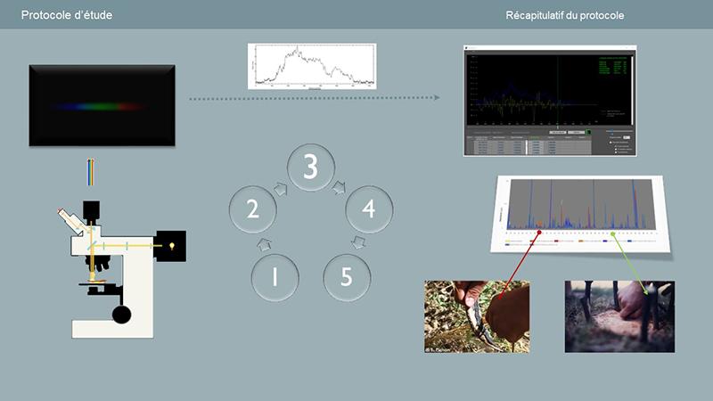 projet_fracture_web.jpg